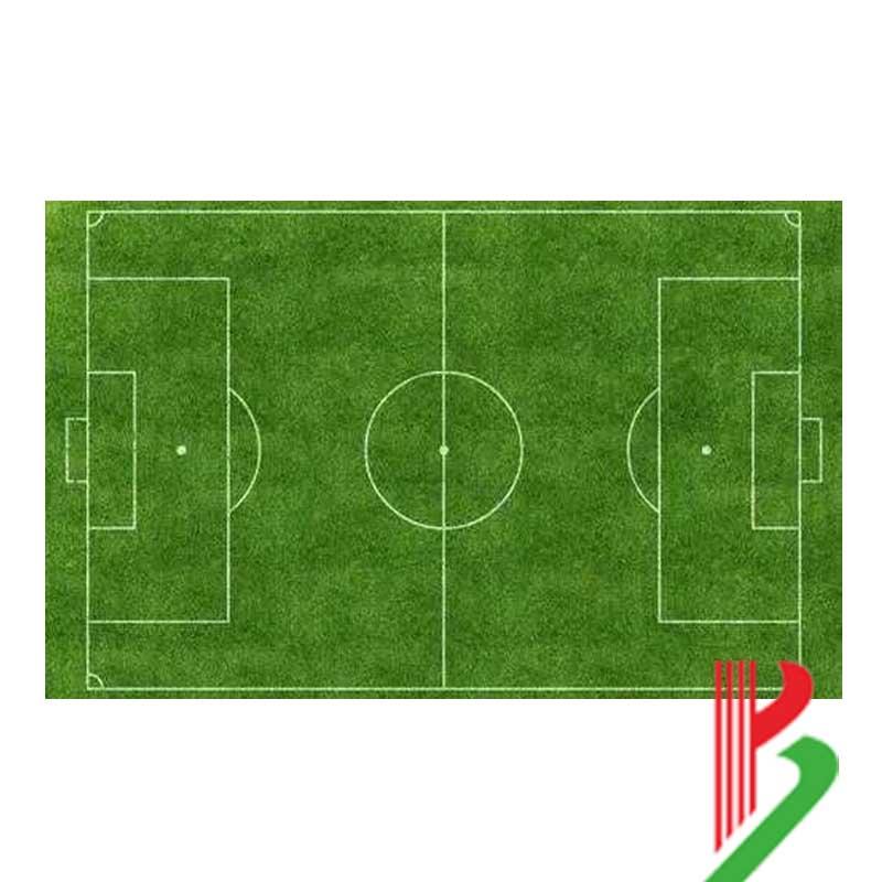 杭州七人制足球场