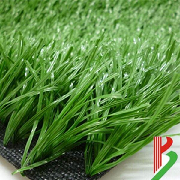 杭州人工草坪